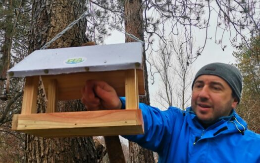 Darko Vasilijić - zimska prihrana ptica